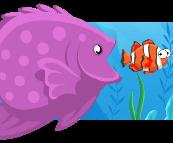python fish eat fish large