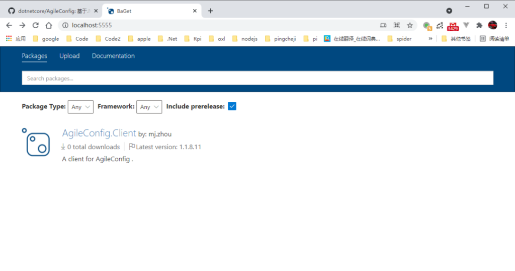 How to use baget to build nuget private server